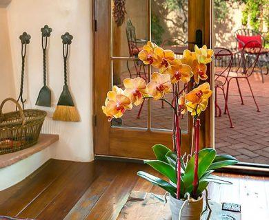 Santa Fe Luxury Vacation Rental Homes Stay With Aqui