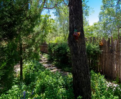 Backyard Pathway with Amazing Stone Steps